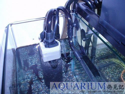 水中モーター換装完了した写真